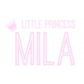 Naamsticker little princess