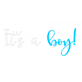 Gender reveal sticker boy