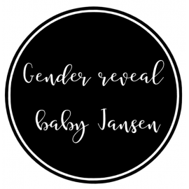Raamsticker gender reveal party