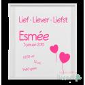 Stickers geboortebord 'Lief - Liever - Liefst'